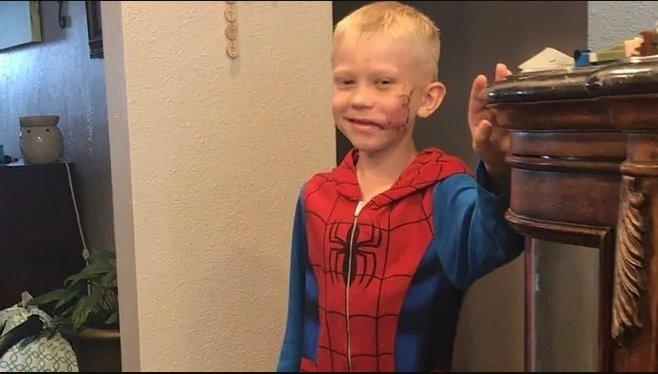 «Капітан Америка» та інші зірки відреагували на вчинок хлопчика, який врятував сестру від собаки